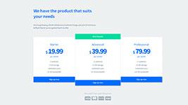 techco_prices.jpg