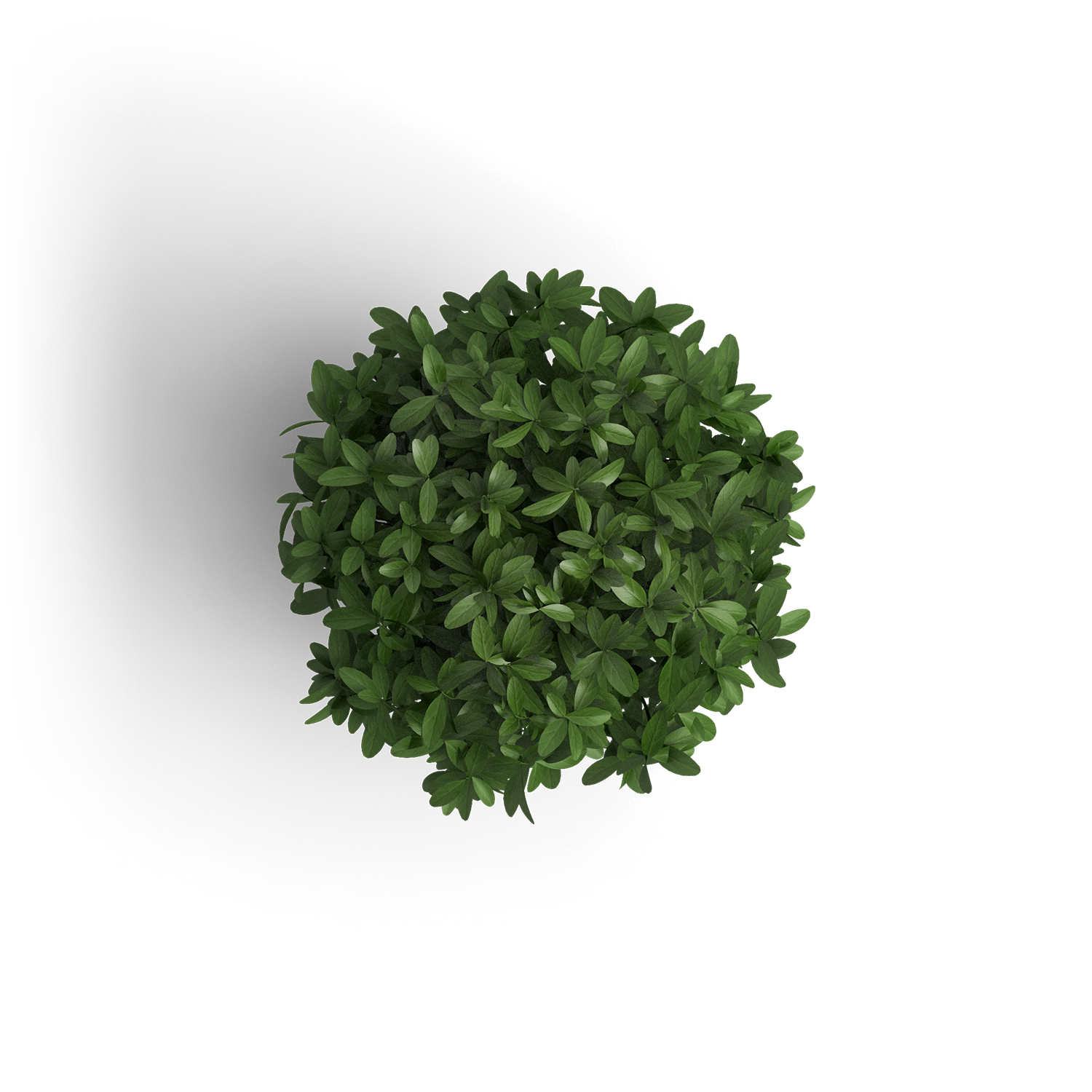 object_plant_1.png